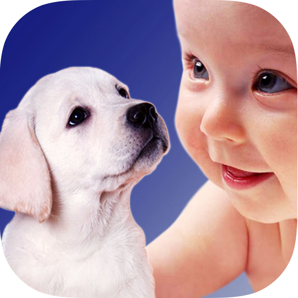 应用程序提供超过 500 幅各类动物妈妈,爸爸和宝宝的高清照片